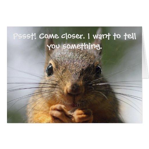 Funny Squirrel Birthday Card Card