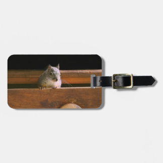 Funny Squirrel Hiding Tags For Luggage