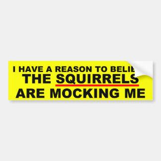 Funny squirrel joke bumper sticker