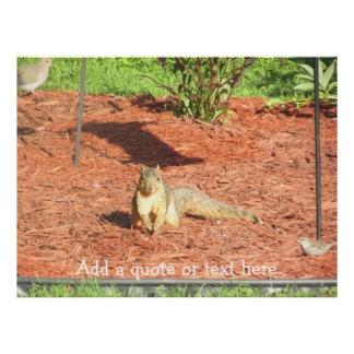 Funny Squirrel Personalized Poster