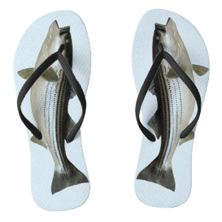 Funny Striped Bass for the Fisher Flip Flops