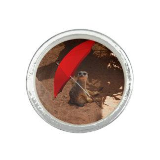 Funny Sun Smart Meerkat Under Umbrella,