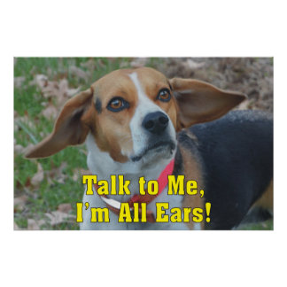 Funny Talk To Me, I'm All Ears Beagle Poster