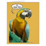 Funny Talking Parrot Cust. Text Greeting Card