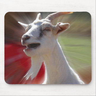 Funny Tallking Goat Photograph Mouse Pad