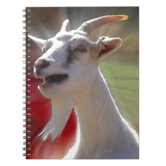 Funny Tallking Goat Photograph Notebooks