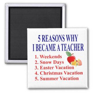 Funny Teacher Gift Refrigerator Magnets