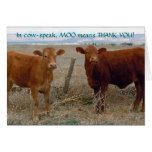 Funny Thank You - Red Cow Animal Humour - Ranch Greeting Card