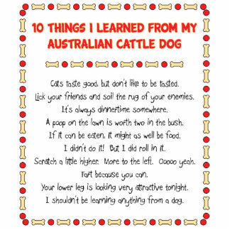Funny Things I Learned From Australian Cattle Dog Standing Photo Sculpture