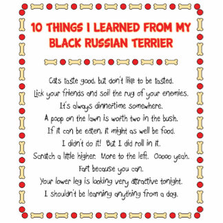 Funny Things I Learned From Black Russian Terrier Photo Cut Out