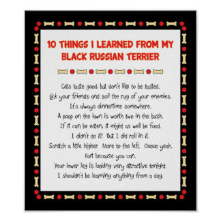 Funny Things I Learned From Black Russian Terrier Poster