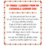 Funny Things I Learned From Catahoula Leopard Dog