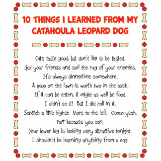 Funny Things I Learned From Catahoula Leopard Dog Photo Sculpture