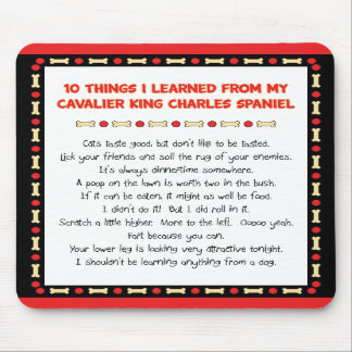 Funny Things I Learned From Cavalier King Charles Mouse Pads