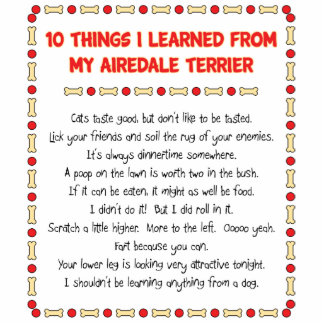 Funny Things I Learned From My Airedale Terrier Standing Photo Sculpture