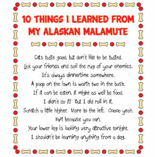 Funny Things I Learned From My Alaskan Malamute Standing Photo Sculpture