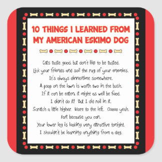 Funny Things I Learned From My American Eskimo Dog Stickers