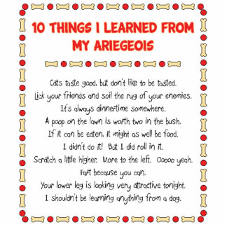 Funny Things I Learned From My Ariegeois Photo Cut Out