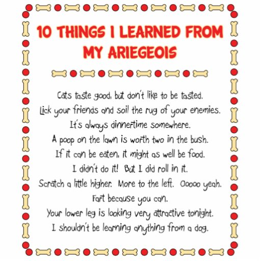 Funny Things I Learned From My Ariegeois Photo Cutout