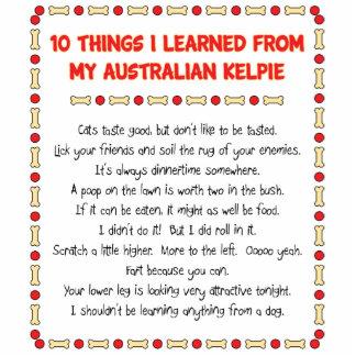 Funny Things I Learned From My Australian Kelpie Photo Cutouts