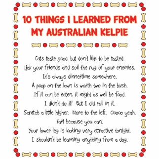 Funny Things I Learned From My Australian Kelpie Photo Cutout