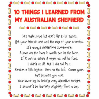 Funny Things I Learned From My Australian Shepherd Standing Photo Sculpture