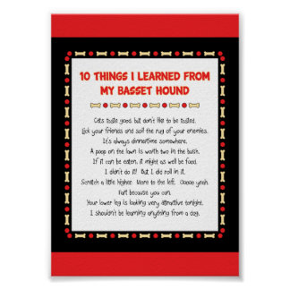 Funny Things I Learned From My Basset Hound Poster