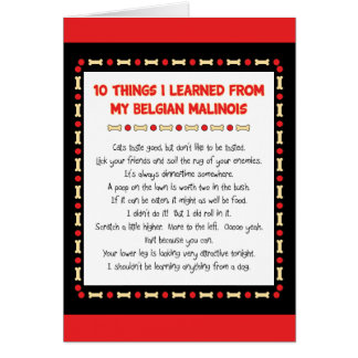 Funny Things I Learned From My Belgian Malinois Card