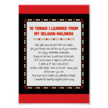 Funny Things I Learned From My Belgian Malinois Print