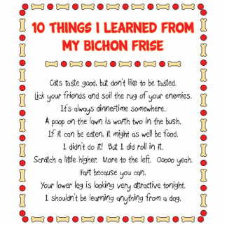 Funny Things I Learned From My Bichon Frise Standing Photo Sculpture