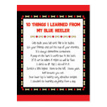 Funny Things I Learned From My Blue Heeler Postcards