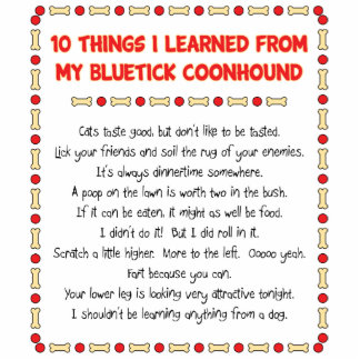 Funny Things I Learned From My Bluetick Coonhound Photo Cutout