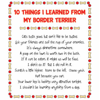 Funny Things I Learned From My Border Terrier Photo Cut Outs