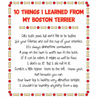 Funny Things I Learned From My Boston Terrier Standing Photo Sculpture