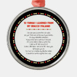 Funny Things I Learned From My Bracco Italiano Ornament