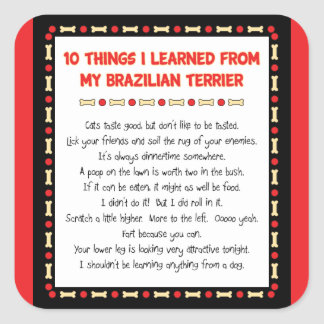 Funny Things I Learned From My Brazilian Terrier Square Sticker