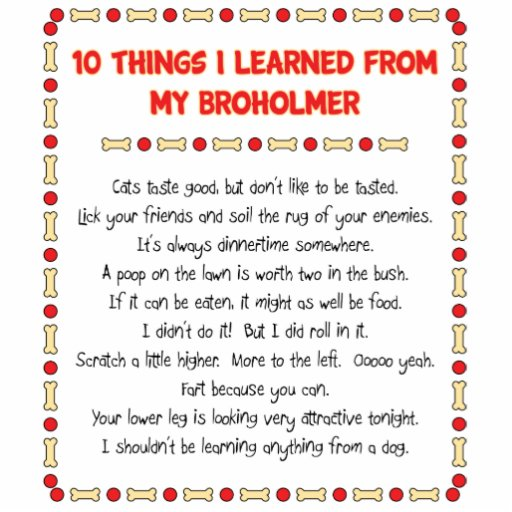 Funny Things I Learned From My Broholmer Cut Out