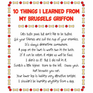 Funny Things I Learned From My Brussels Griffon Standing Photo Sculpture