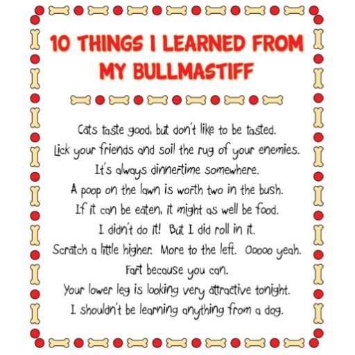 Funny Things I Learned From My Bullmastiff Acrylic Cut Out