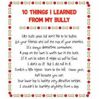 Funny Things I Learned From My Bully Cut Outs