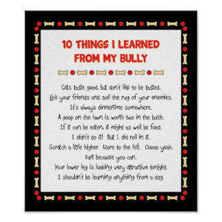 Funny Things I Learned From My Bully Poster