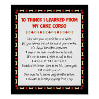 Funny Things I Learned From My Cane Corso Poster