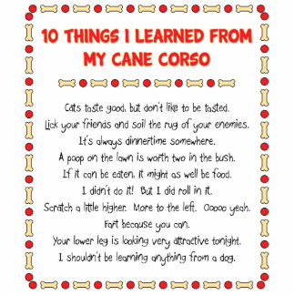 Funny Things I Learned From My Cane Corso Standing Photo Sculpture