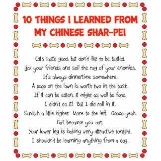 Funny Things I Learned From My Chinese Shar-Pei Standing Photo Sculpture