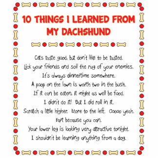 Funny Things I Learned From My Dachshund Standing Photo Sculpture