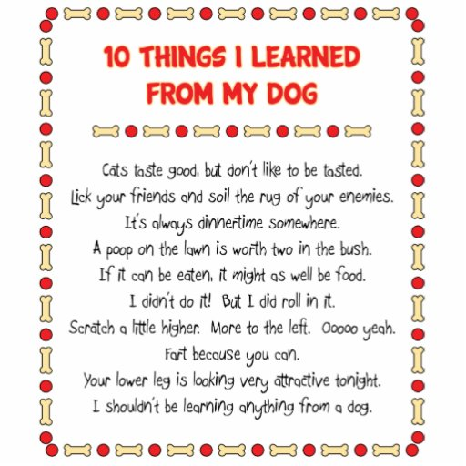 Funny Things I Learned From My Dog Photo Cut Out