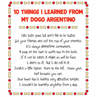 Funny Things I Learned From My Dogo Argentino Standing Photo Sculpture