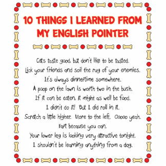 Funny Things I Learned From My English Pointer Photo Cut Out