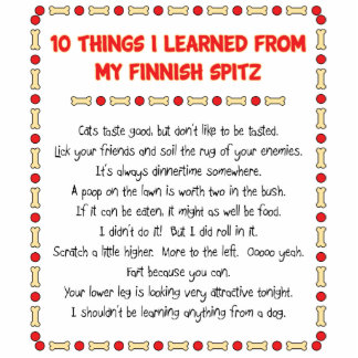 Funny Things I Learned From My Finnish Spitz Standing Photo Sculpture