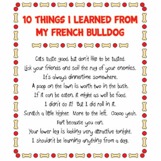 Funny Things I Learned From My French Bulldog Standing Photo Sculpture